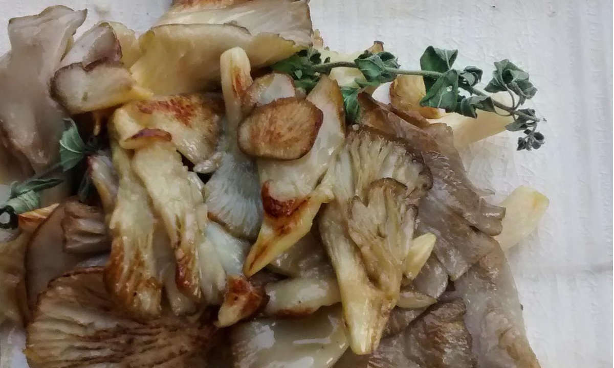 OYSTER MUSHROOMS WITH GARLIC AND PARSLEY
