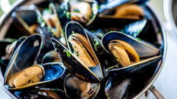 Steamed mussels with bay leaf and lemon